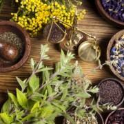 Top 10 cele mai eficiente antibiotice naturale pentru tratarea și prevenirea infecțiilor