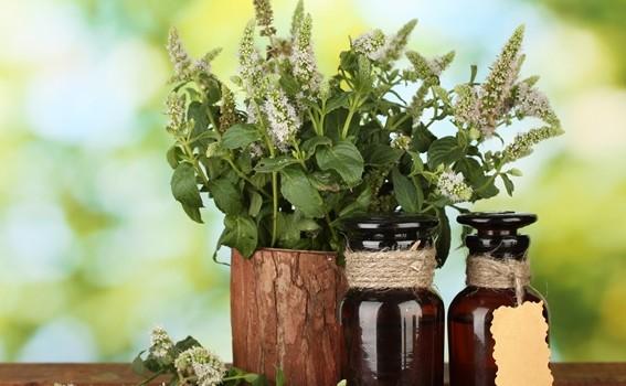 Tratamente naturiste pentru bolile osteoarticulare