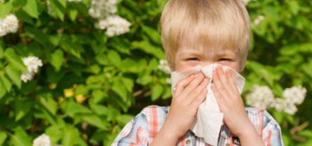 Alergiile de primăvară la copii – ușor de confundat cu o banală răceală! Iată simptomele care diferențiază cele două afecțiuni și tratamentele ce pot calma reacțiile la polen sau praf