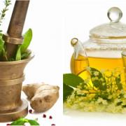Plante care ajută la regenerarea ficatului
