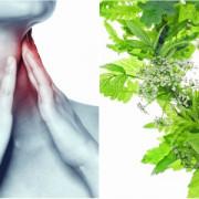 Durerea în gât: cauze și tratamente naturiste