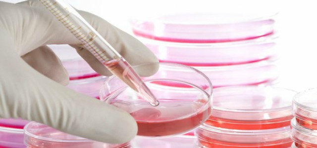 10 lucruri despre celulele stem pe care orice părinte trebuie să le cunoască