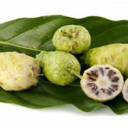 Fructul Noni- un miracol pentru sănătate