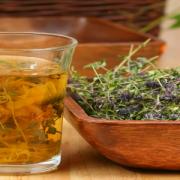 PIETRE LA RINICHI – Ceaiuri și plante care favorizează eliminarea pietrelor la rinichi